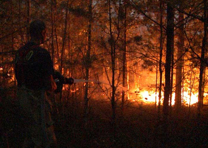 Projekt Skogsbrand