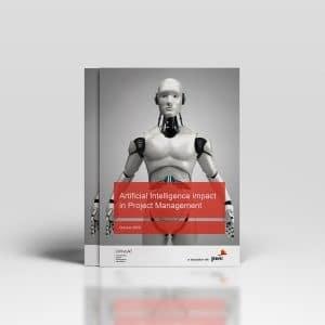 Rapport: Användandet Av AI I Projekt